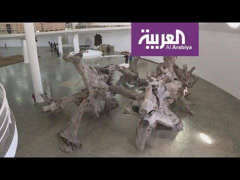 حول العالم.. بحيرة البجع في دبي والشمس تقتل البكتيريا  - نشر قبل 22 دقيقة