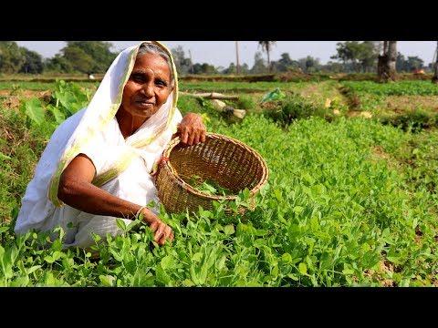 Farm Fresh Matar Shag Ghanta Recipe by our Grandmother | Indian Bangali Village Food
