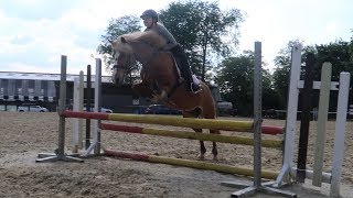 Training fürs erste Springturnier 😱🤩 | Marina und die Ponys