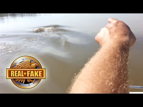 MISSOURI  RIVER MONSTER - real or fake?