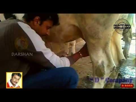 Image result for darshan farming