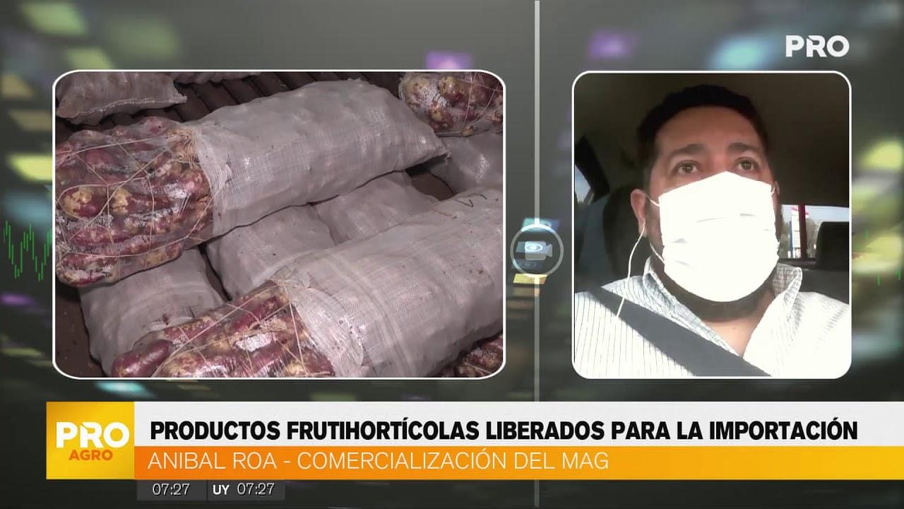 Liberan la importación de productos frutihortícolas