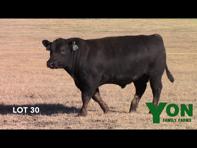 Yon Family Farms Lot 30