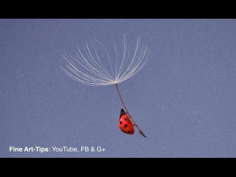Drawing a Ladybug Blown by the Wind - Time Lapse