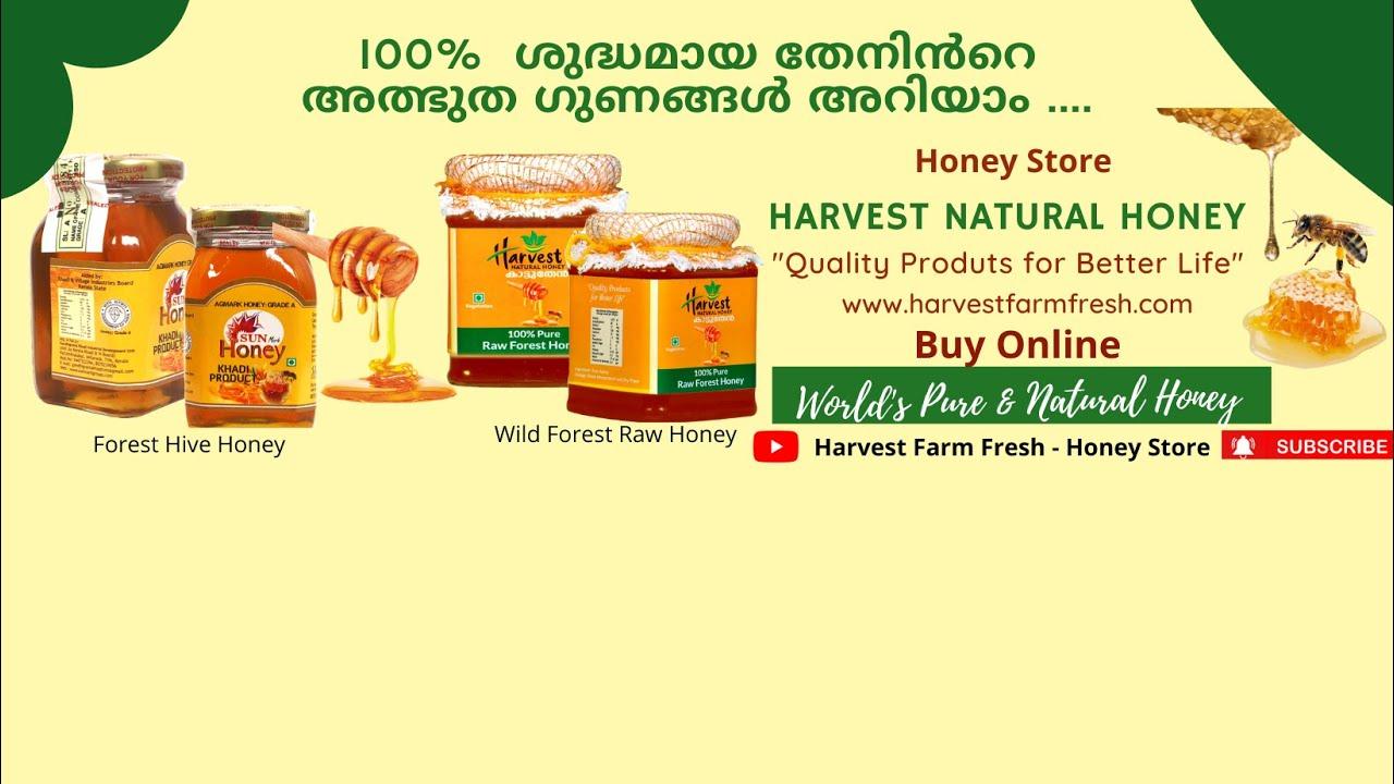 Harvest Farm Fresh - Youtube Channel Trailer -Harvest Natural Honey