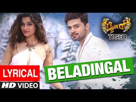 Tiger Songs   Beladingala Raatri Lyrical Video Song   Pradeep, Madhurima   Arjun Janya Nanda Kishora