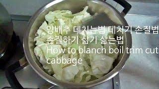 양배추 데치는법 데치기 손질법 손질하기 삶기 삶는법 How to blanch boil trim cut cabbage