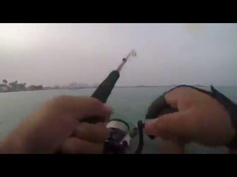 Doha Fishing (qatar)