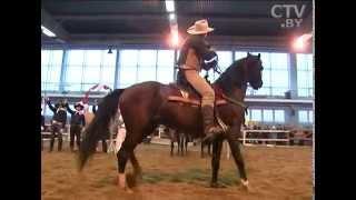 видео Шпаргалка - Вестерн конный спорт - История