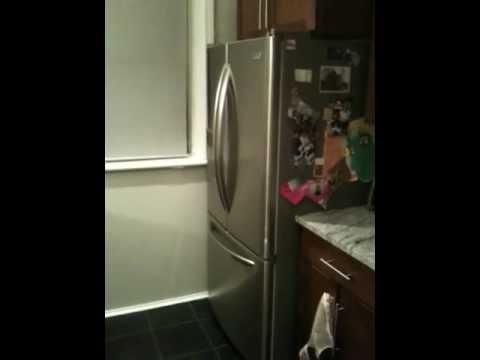 Defective Sears Kenmore Elite Refrigerator