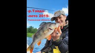 Рыбалка на Тавде этим летом часть 1 Тюменская область Лето 2019