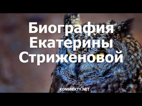 Биография Екатерины Стриженовой