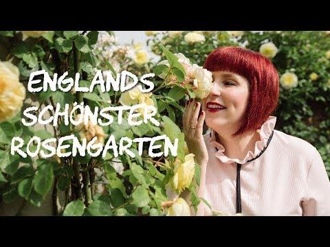 david-austin---england's-most-beautiful-rose-gardens