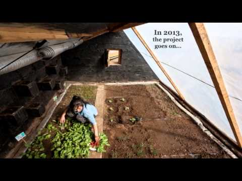 Passive Solar Greenhouses in Mongolia