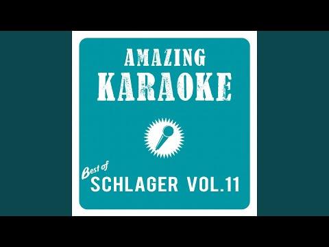 Ich hab' Ehrfurcht vor schneeweißen Haaren (Karaoke Version) (Originally Performed By Camillo...