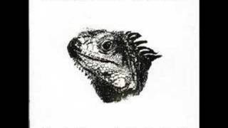 Mauro Picotto-Iguana(better version)