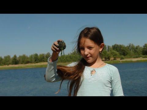 Фильмы про русалок – смотреть онлайн бесплатно на