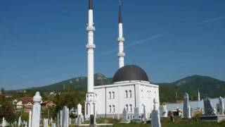 Bosnia's Fragile Peace: Continuing Struggles for Bosnia and Herzegovina