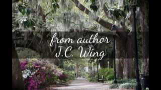 Book Trailer for A Skye Full of Stars by J.C. Wing