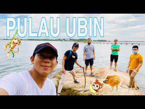 Pulau Ubin Singapore Biking Youtube