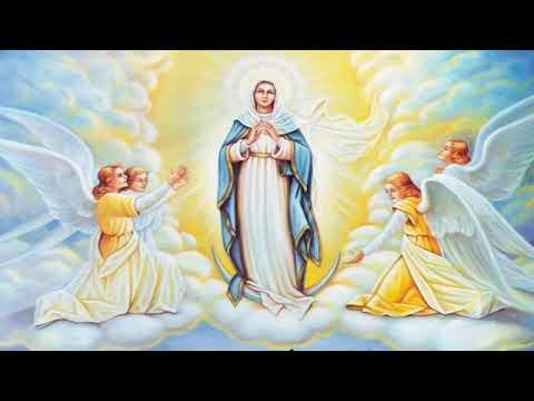 Holy Rosary -