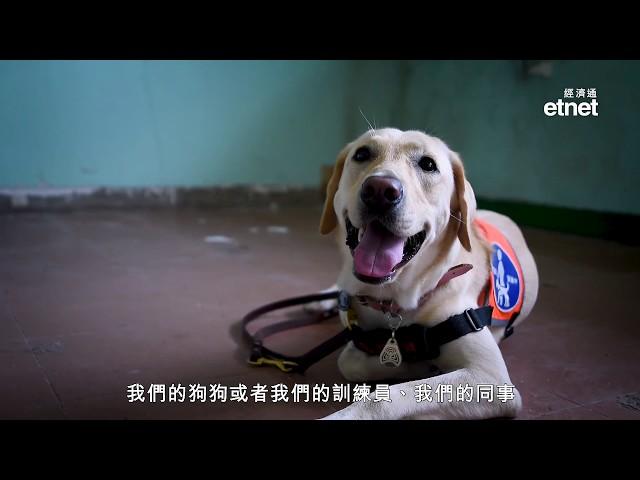 前流浮山警署變身狗狗學校 培育百分百「港產」導盲犬