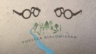 Przedziwna Puszcza Białowieska