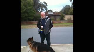 Harry Pywell Dog Training - Go To Marker 1