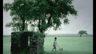 hutch boy dog