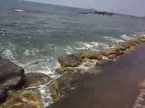 Cyprus, Paphos, harbour 2013 summer ( honeymoon )