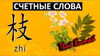 Счетные слова в китайском языке -  枝 zhi | Видеоуроки китайского языка