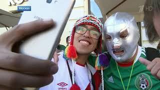 Болельщики всего мира наслаждаются футболом и благодарят Россию  Новости  Первый канал
