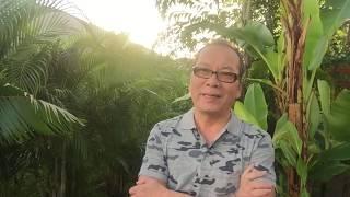 HIỆN TÌNH ĐẤT NƯỚC NGÀY 04/12/2019   CHẤN ĐỘNG MỘT DỰ LUẬT MỚI