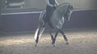 Broadway  training: nearly 10 year, nearly ready for  Grand prix