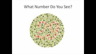Color Blind Test - Online