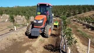 Orchard cover cropping w/Moreni Vitis K power harrow