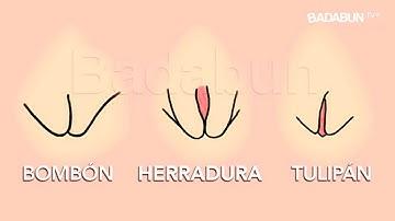 Los 4 tipos de Vaginas que existen. Mira cuál causa más placer