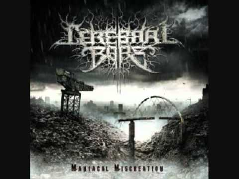 Top 60 BrutalTechnical Death Metal Slams Pt 60 YouTube Stunning Slam Metal Quotes