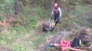 Electric Wheelbarrow 2101