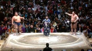 January 2016 - Day 11 - Hakuho v Kotoshogiku