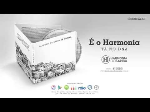 SAMBA BAIXAR HARMONIA AUDIO MANAUS