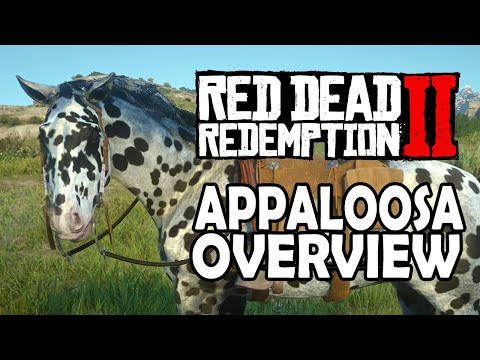 Red Dead Redemption 2 Horses - Appaloosa Overview thumbnail