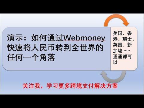 走资方法:如何通过俄罗斯支付宝Webmoney走资,跨境汇款,货币兑换,担保交易。干货满满,你一定要耐心看完。走资方法大全