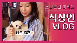 VLOG | 스타트업 마케터 직장인 브이로그♥ 반려동물…