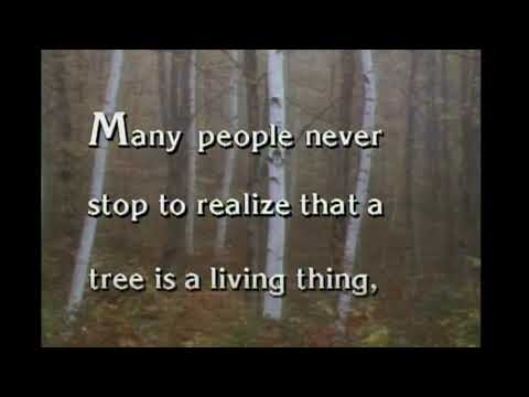 Deep Thoughts by Jack Handey: Trees Are Living Things