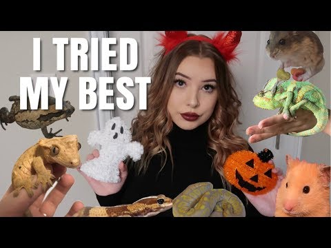 ALL MY PETS GO TRICK-OR-TREATING!!?? Sort Of??