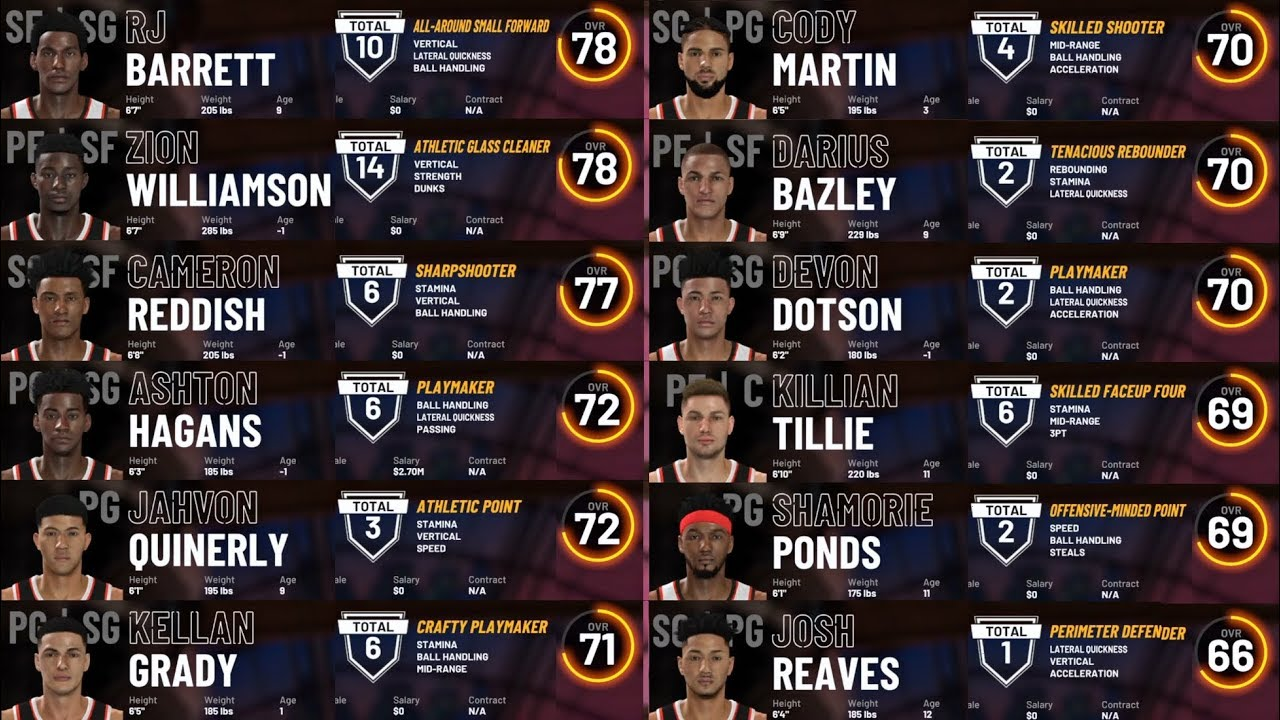 Full 60 Player 2K19 Draft Class (Best 2019 Class for PS4)
