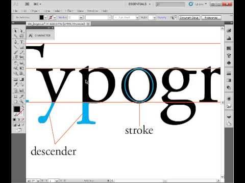 Indesign Tutorial ( Letterform anatomy) 4
