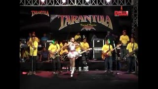 Download lagu New Tarantula Trend Music Mati Lu Iis Monica MP3