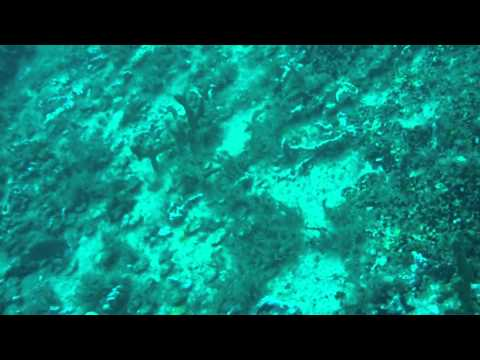 Key Largo SCUBA 11 - From ship to [sunken] ship